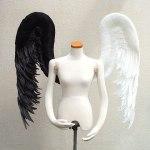 wing076-f