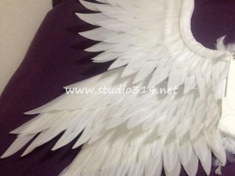 wing085-2