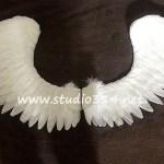 wing086-4