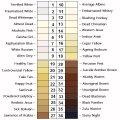 skin-tone-chart