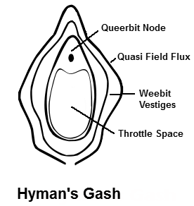 possible-teleportation-hymans-gash-diagram