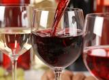 noe-festiwal-wino