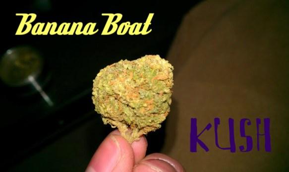 Banana Boat Kush Marijuana Strain