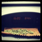 nice blunt wrap with weed in it pic