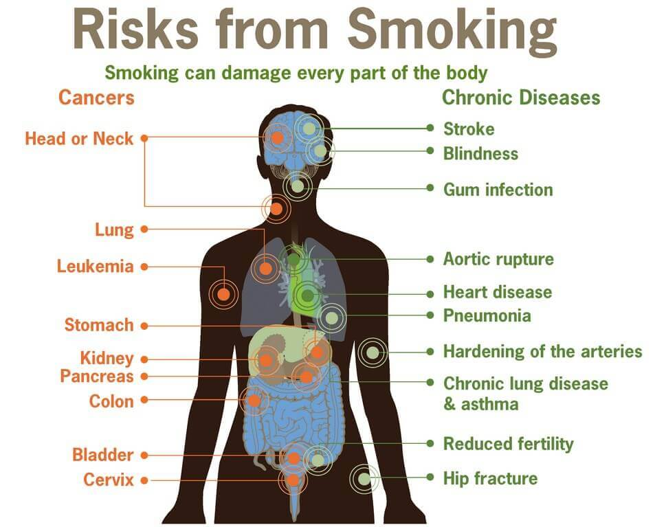 Study Indicates-Weed-Vaporizer-Usage-Poses-Less-Risk-for-Toxin-Exposure-vaporplants-smoking-damage-health-body