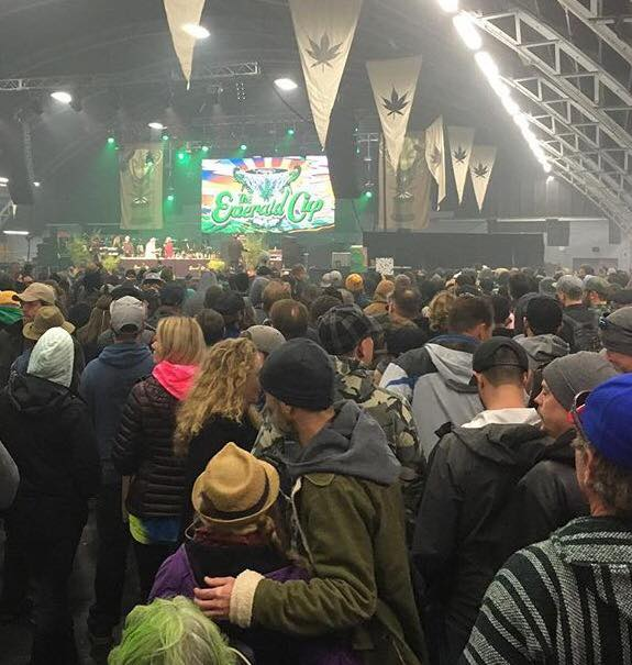 Emerald Cup 2016 Results are in