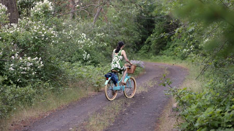 Bike Ride 7b