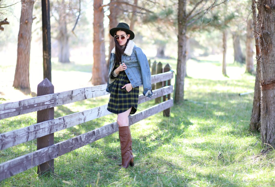 Plaid Flannel Dress 1a