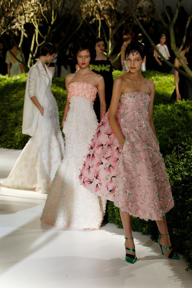 Dior Haute Couture Spring Summer 2013 Collection 1