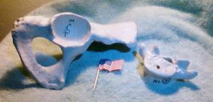 rosetta-bones-US