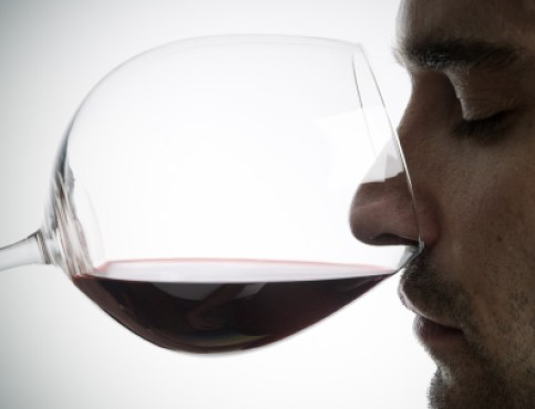 Wine tasting isn't bullshit