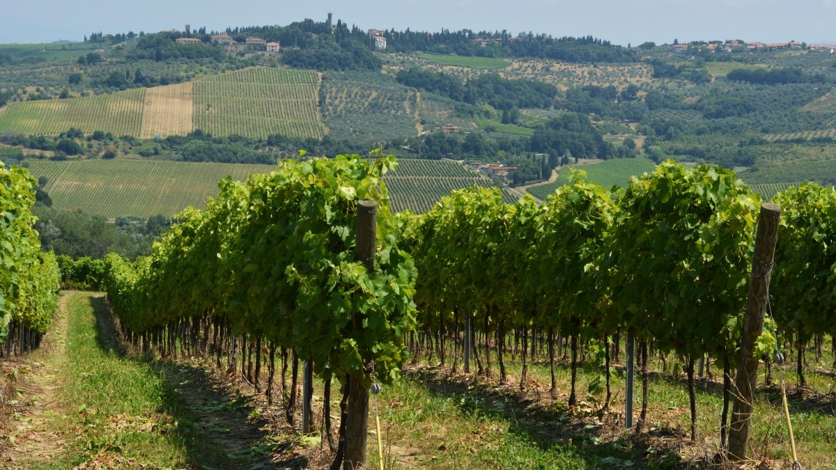What's a 'Wine'? IV: European Growing Regions