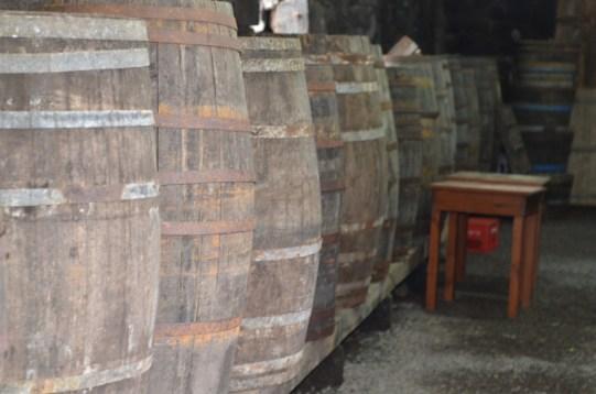 barrels aging volcanoe wine