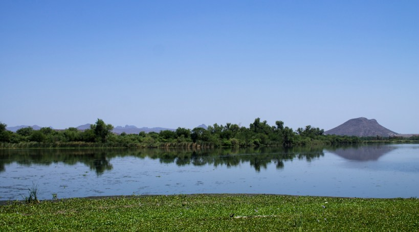 Perspectiva del río Yaqui en su parte no afectada. Fotografía: Regina López