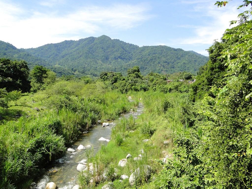 La región del Soconusco es una de las más biodiversas en México. Foto: Renata Bessi