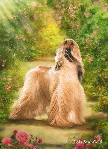 pet art image by lois stanfield