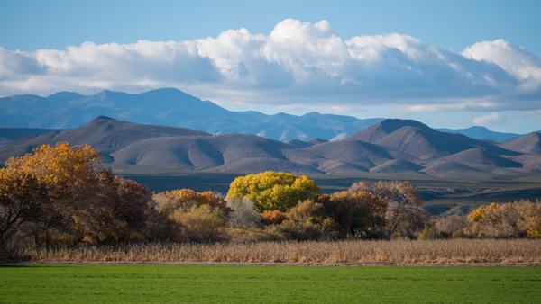 bosque del apace scenery photo