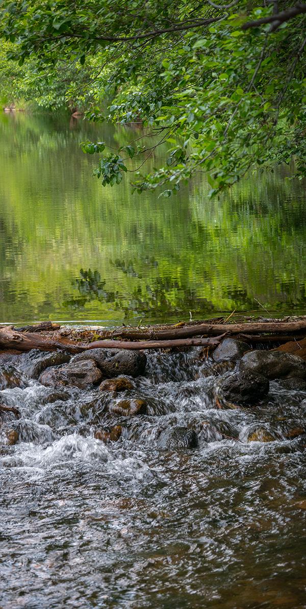 oak creek and pond