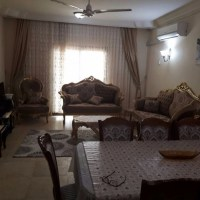 Deluxe furnished apartment