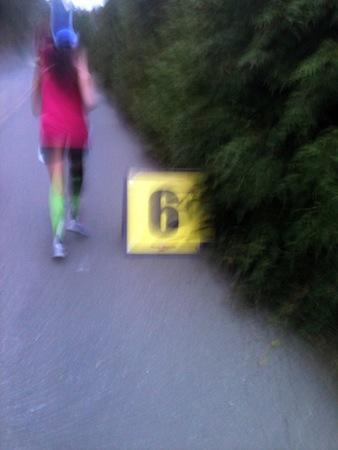 img 4482 California Wine Country Half Marathon, Healdsburg, 2011