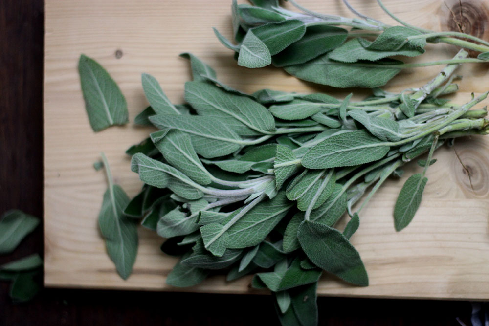 sage leaves | sugar thumb