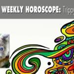 humorous horoscopes