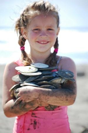 Livvy - the sand dollar collector