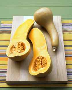 Small Of When To Pick Butternut Squash