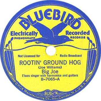 Big Joe Williams: Rootin' Ground Hog 78