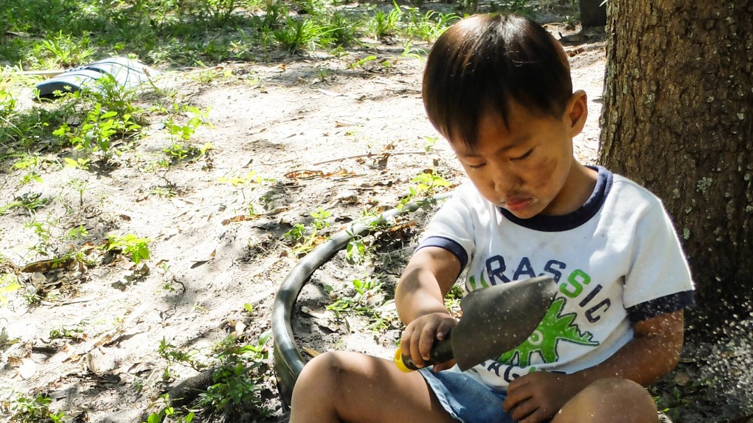 Nature in Early Childhood Education at Sunflower Creative Arts