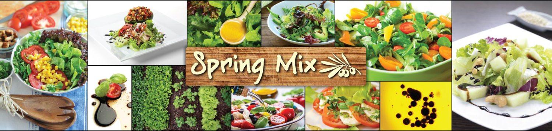 Spring-Mix-wp