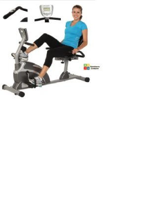 Exerpeutic 1000 High Capacity Magnetic Recumbent Bike review
