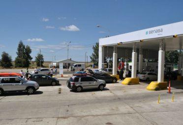 El Senasa está a cargo del sistema cuarentenario patagónico. FOTO: Senasa.