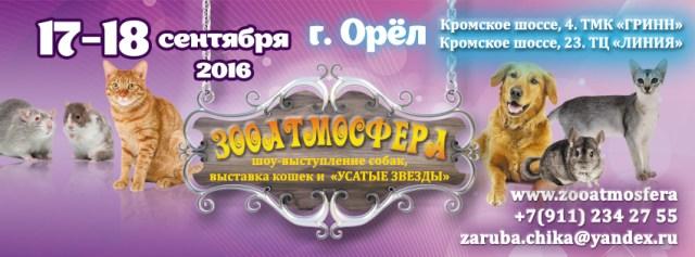 17 и 18 сентября 2016 Орёл.