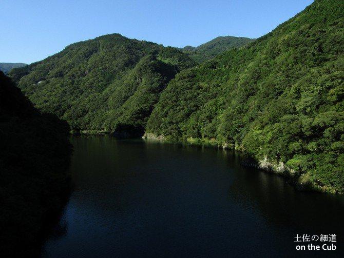 ダム湖は濃厚な自然