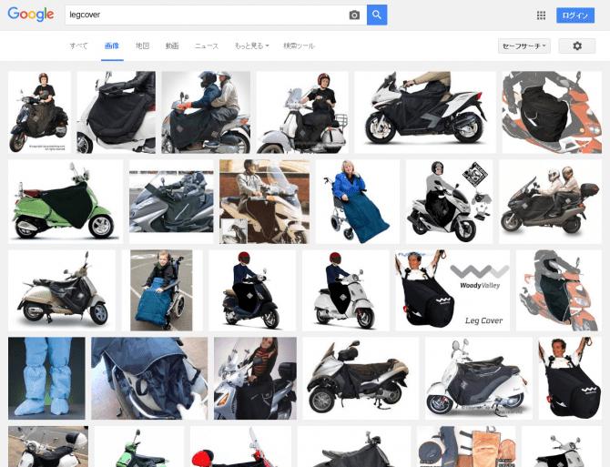 レッグカバーの画像検索結果@フランス