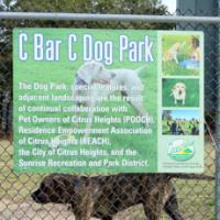 Dog Park Aggression