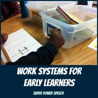 Work Systems for Early Learners