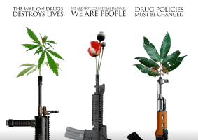 drug war peace