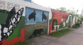 Apuntes sobre el acontecer en Tortuguero parte 1-2