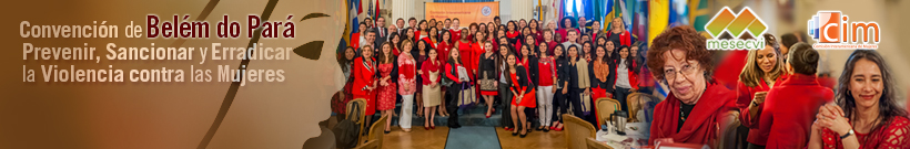 Comite de Expertas del Mecanismo de Seguimiento de la Convencion para Prevenir Sancionar y Erradicar la Violencia Contra la Mujer