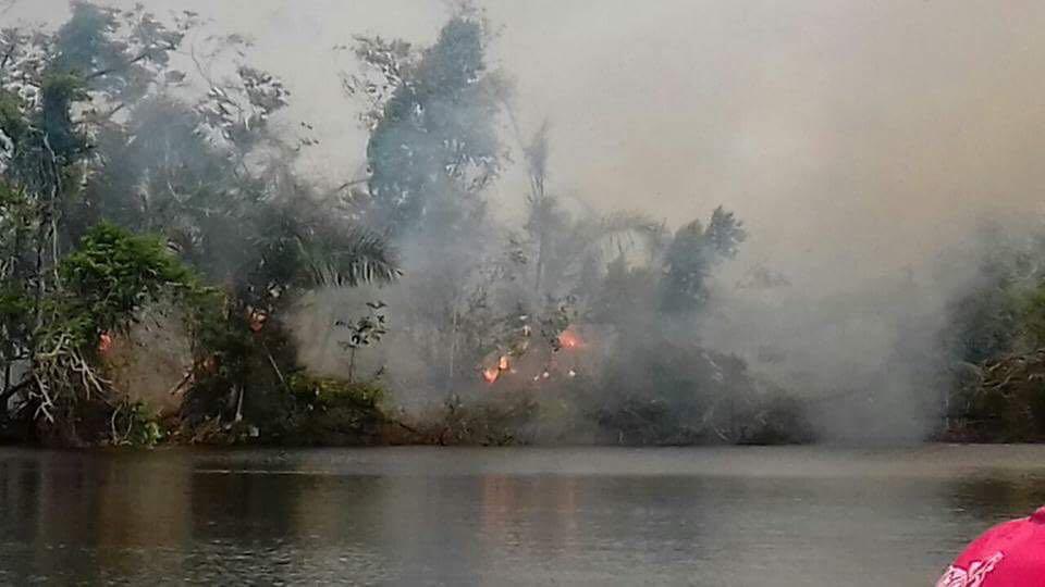 Incendios forestales devastan Reserva Biologica Indio Maiz