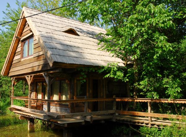 Despre case din lemn vechi mester Danut Hotea case rustice din lemn