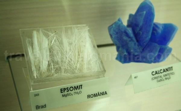Epsomit si calcantit – Muzeul Aurului – Brad