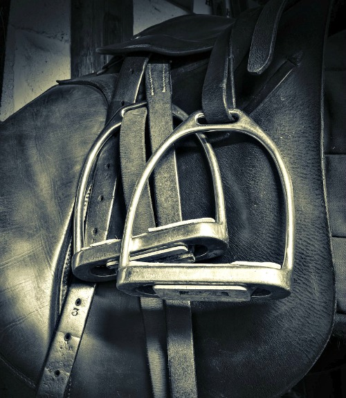 equestrian safety saddleseekshorse.com
