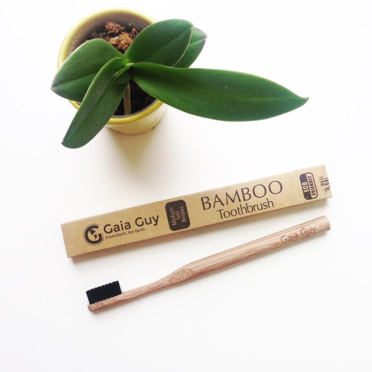 bamboo toothbrush toothbrushes tooth brush eco ecofriendly friendly environment green biodegradable sustainable sustainability daisy product blog blogger review gaia guy