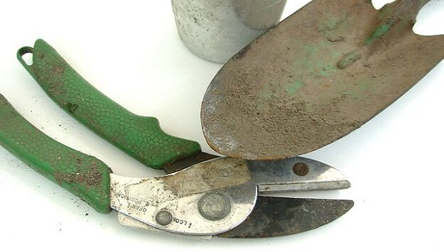 How to maintain your garden tools sustainable gardening news for New gardening tools 2016