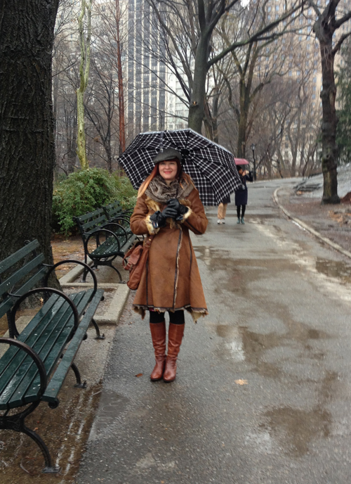 Central Park NYC in the rain