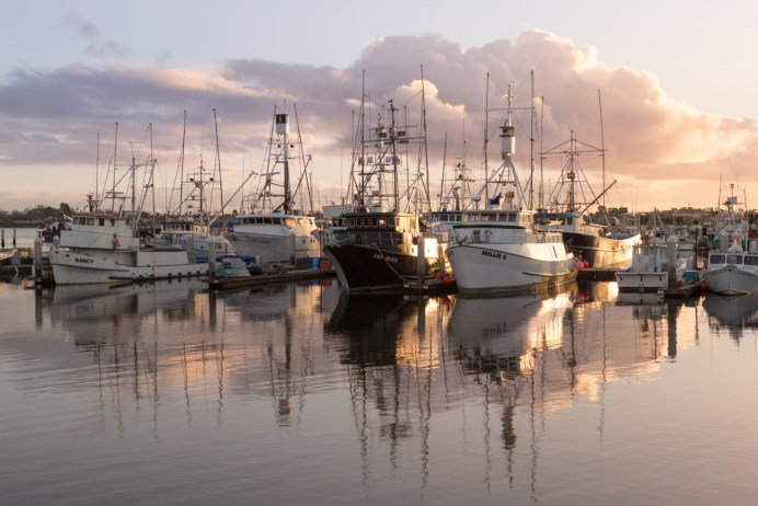 Coronado_Island_San_Diego-224