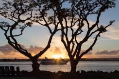 Coronado_Island_San_Diego-243